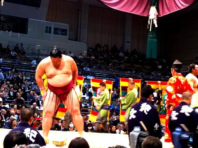 大相撲チケットの取り方は2通り!購入方法を詳しく解説!